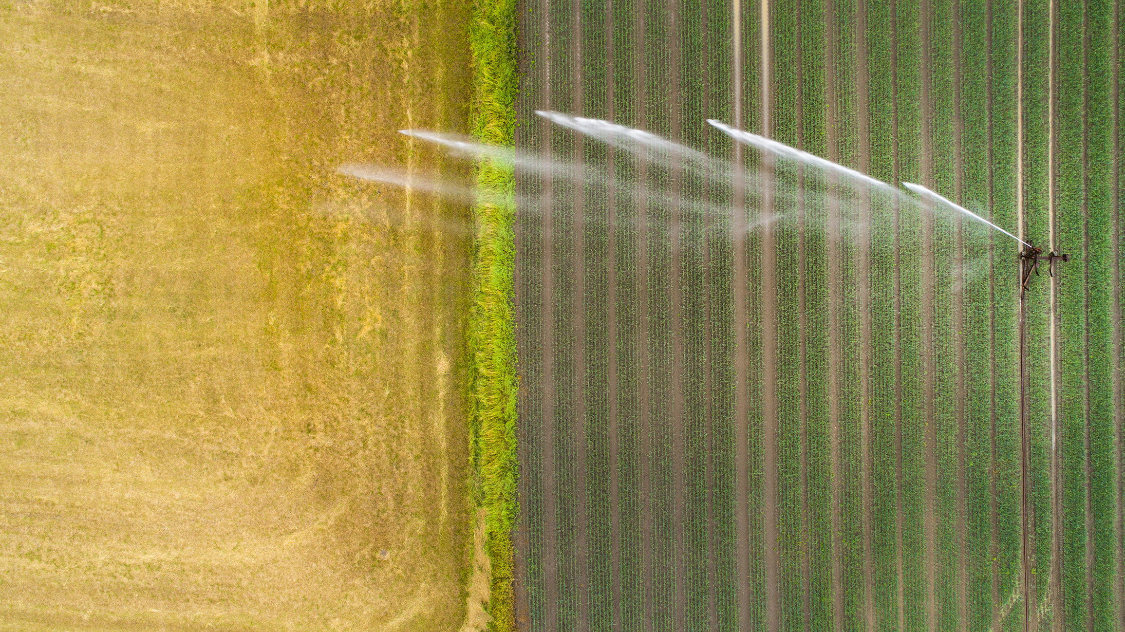 The Best In Irrigation Control Technology For Crop Farms